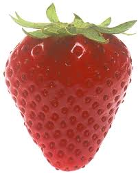 Strawberries are pollinated by bees