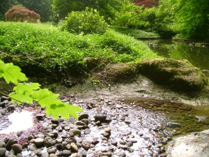 stream-water-at-grotto-with-rocks