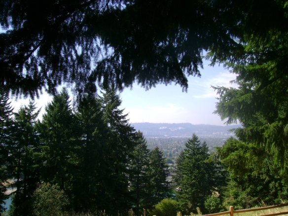 mount tabor tree view