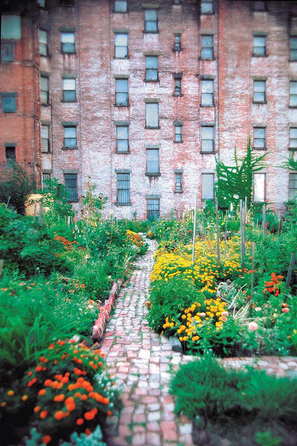 community-garden-thanks-to-green-guerillas