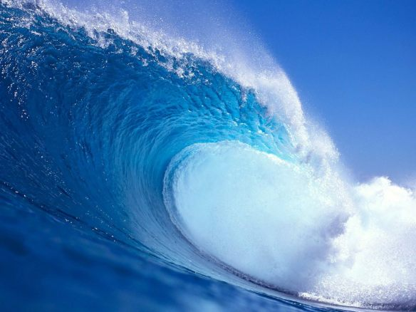 The sea of humanity big-wave