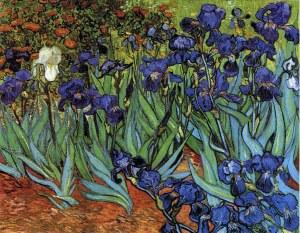 van gogh irises-1889 wikipaintings