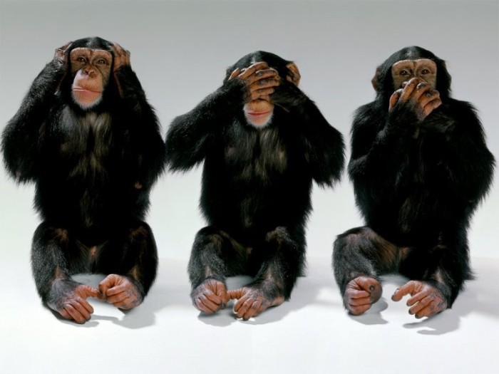 MonkeySeeHearSpeakNoEvil