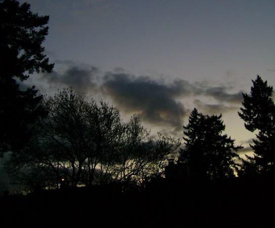 night-view by SBI