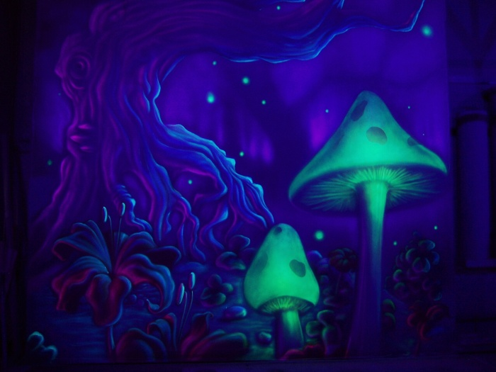 magic_mushrooms_by_tomlenz