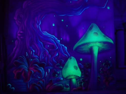 writersmagic_mushrooms_by_tomlenz