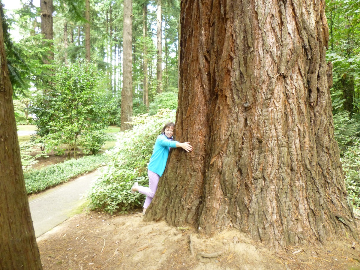 Confessions of a TreeHugger