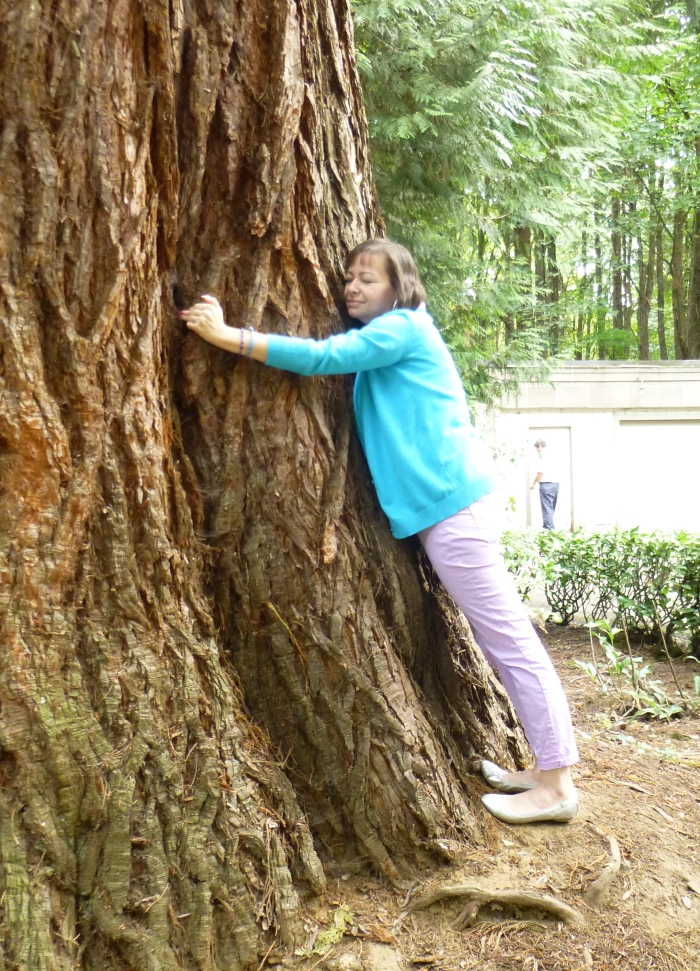 I've decided to hug all the trees I want and not care what others think.