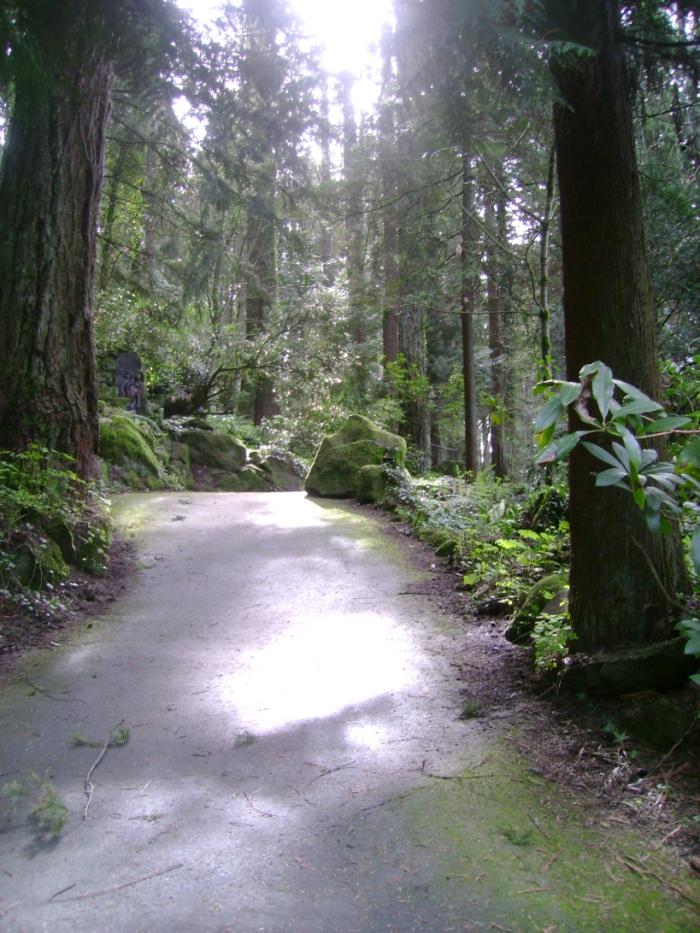 The Grotto in Portland Oregon. Credit: SBI