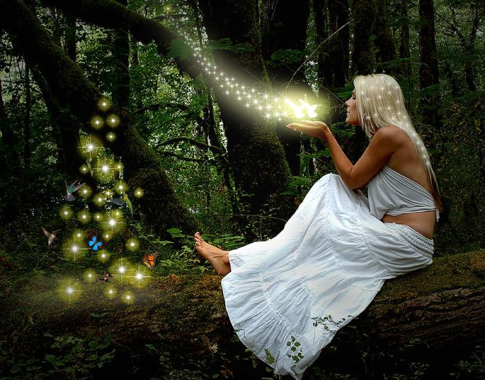 light-beings-norman-free rumi