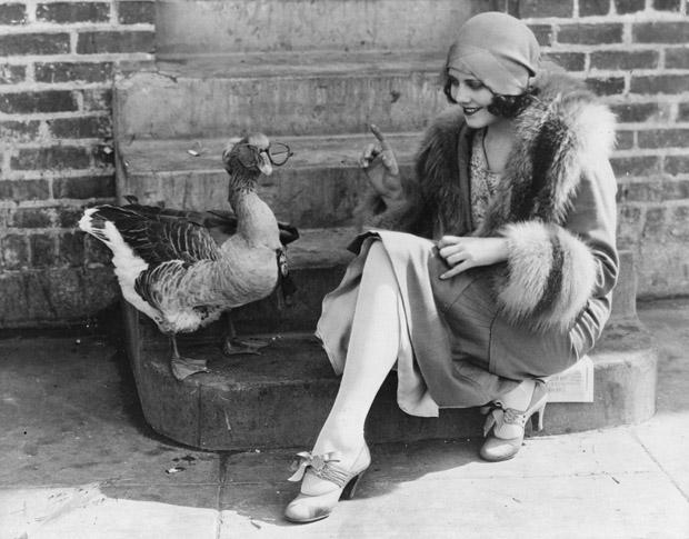 Vintage Photos of Animals Acting Like People (16)