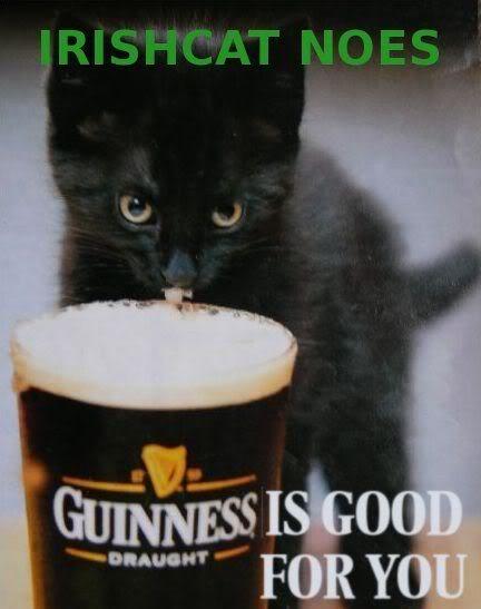 Cat-Guiness Irish
