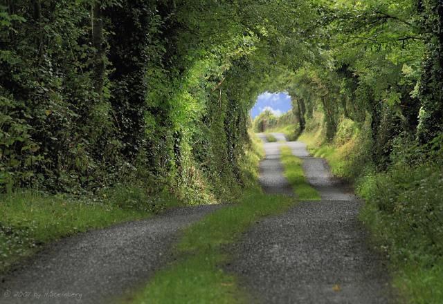 Green Tunnel2 Ireland