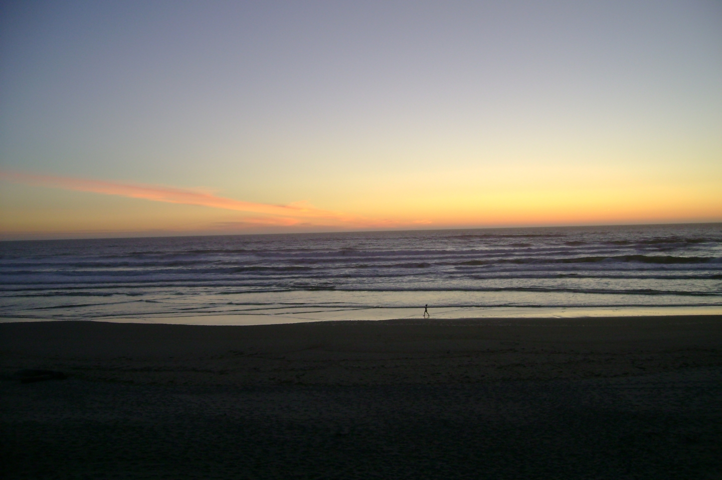 small_things_walk_alone_on_beach_at_sunset_2
