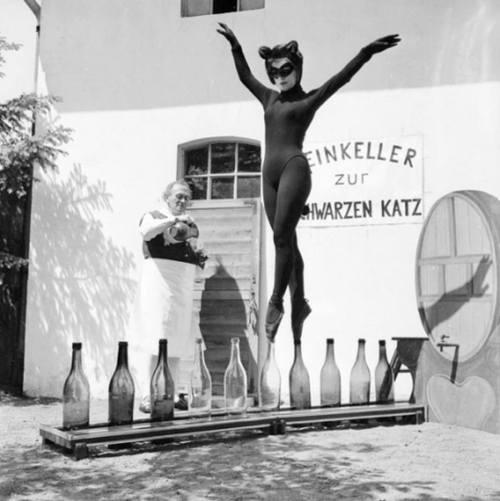 vintage odd cat woman funny