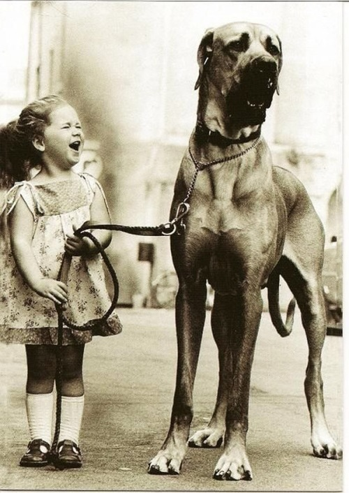 awesome_vintage_photos_with_animals_ girl dog
