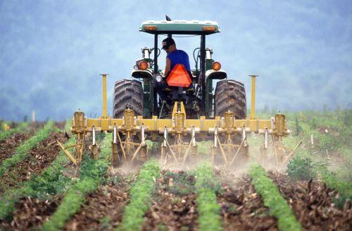 dirtFarmer_and_tractor_tilling_soil