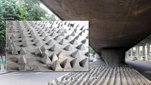 Homeless spikes under-bridge in China  Photo:  Daily Mail