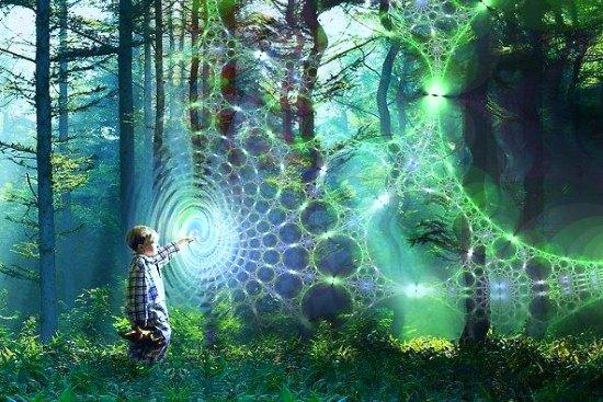 web-of-lifeA-550 fantasy art