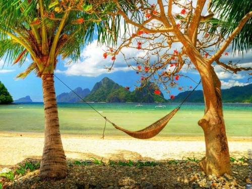 Bora Bora Island, French Polynesia tropic beach