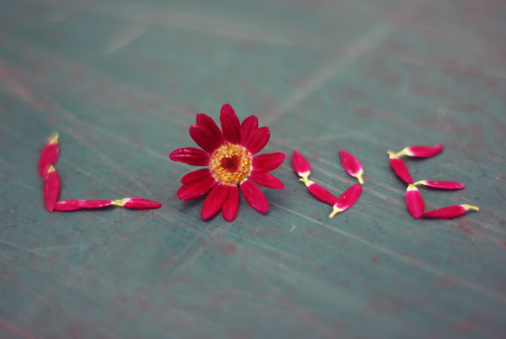Flower petals spelling LOVE