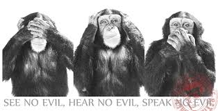 monkey evil see no