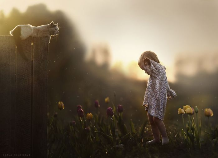 animal-children-photography-elena-shumilova-13 cat shadow girl