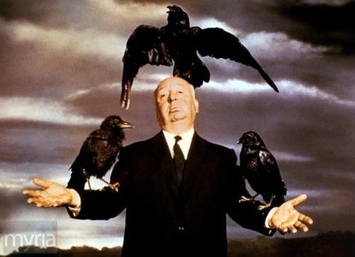 hitchcock and-the-birds-corbis-large movie crows
