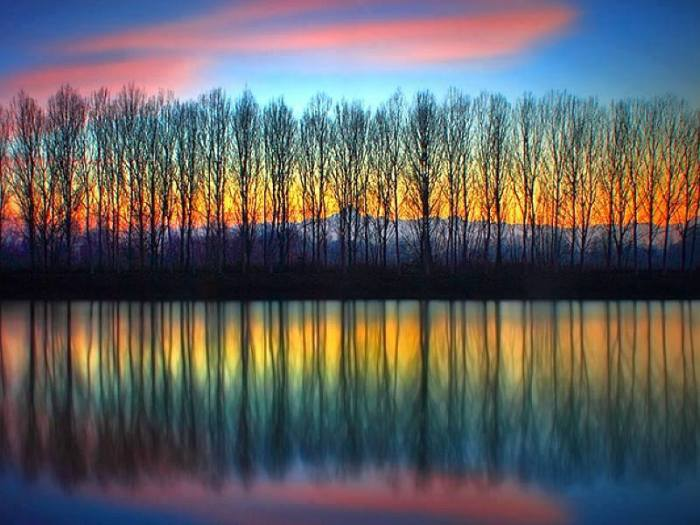 color tree mountain lake water night sinset beautiful back