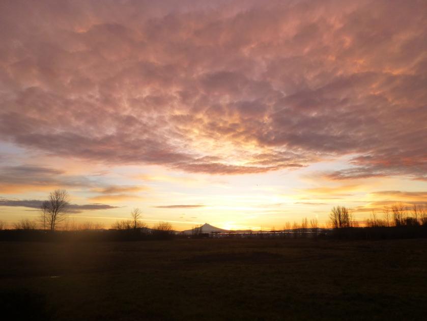 way to work sunrise today