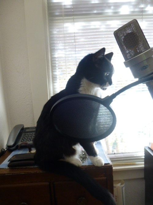 mario my famous cat sings sing a song