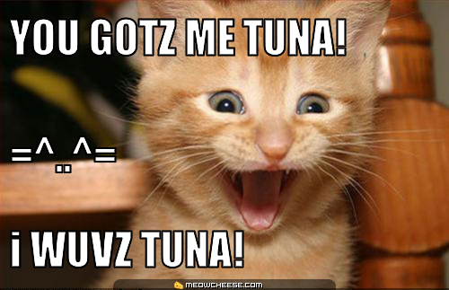 tuna cat