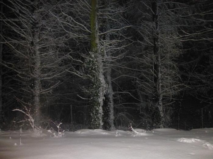 night-snow