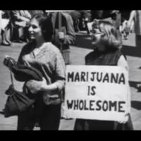 Free the Marijuana